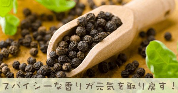 ブラックペッパーのアロマオイル精油の効果効能