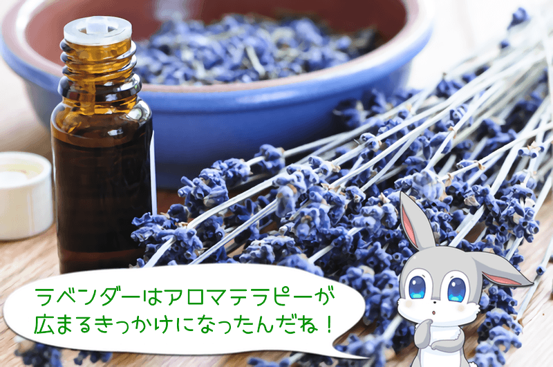 aromatherapy-oil ラベンダー