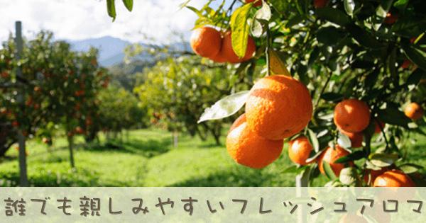 スイートオレンジは親しみやすいおなじみのアロマオイル精油です