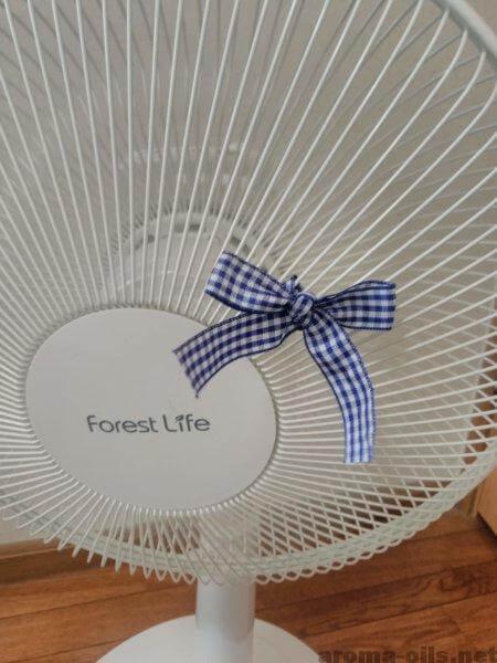 ミントで暑さ対策「扇風機」